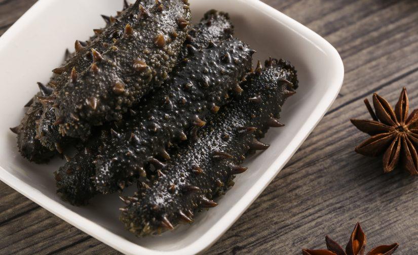 海參種類與烹煮方法